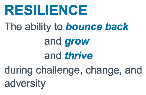 Resilience: the ability to bounce back and grow and thrive during challenge, change, and adversity