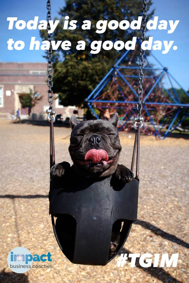 bulldog in baby swing licking his lips with a happy look on face, says today is a good day to have a good day